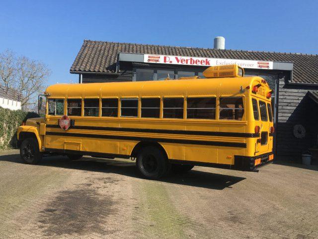 camper bus oldtimer
