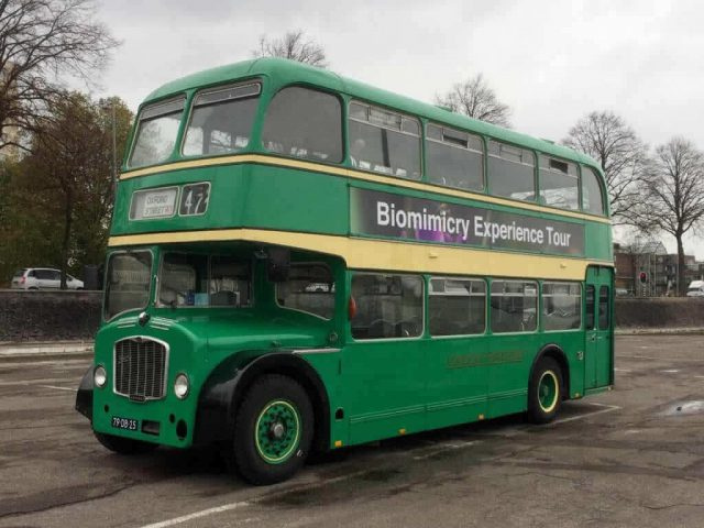 vervoer voor bedrjfsuitje en promotierit groene engelse bus